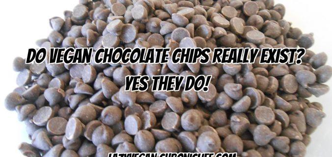 vegan chocolate chip list