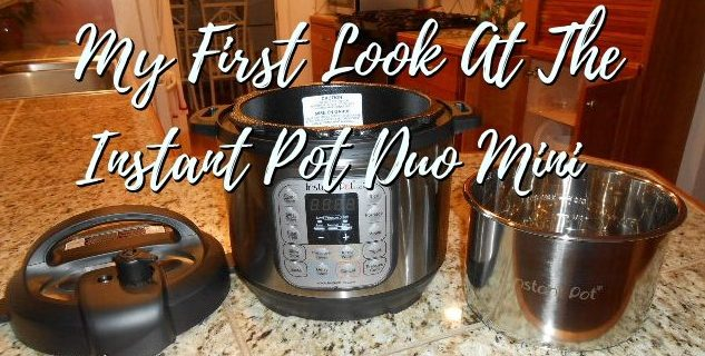 instant pot duo mini vegans
