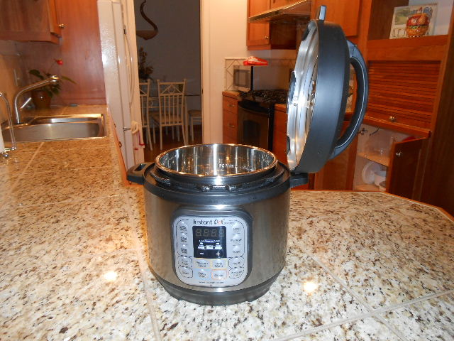 instant pot mini duo with lid